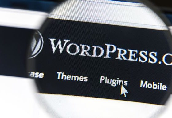 things you can do with wordPress