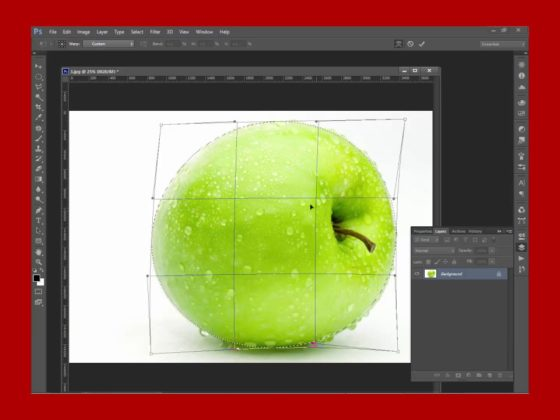 How to Use Elliptical Tool In Photoshop